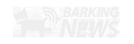 Barking news - новости о животных